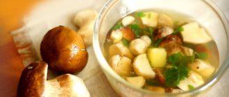 суп с грибами как варить